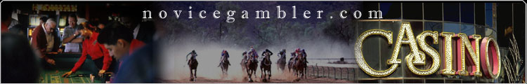 Novice Gambler - the # 1 source of free gambling information for beginners